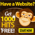 Get 1000 Hits Today